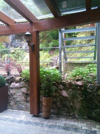 Вид во двор