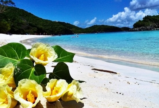 Trunk Bay: Awesome day