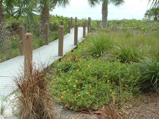 Shell Island Beach Club: Boardwalk to the beach