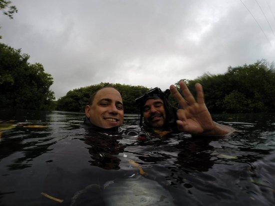Cenote Xperience: bueceo en manati