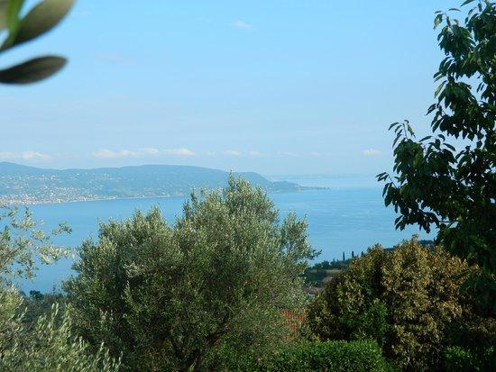 Agriturismo Scuderia Castello: Vista sul lago