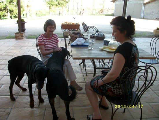 Domaine de la Belliere: Avec Béatrice, Eliott et Armstrong