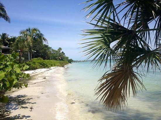Shell Island Beach Club One Of The Beautiful Beaches On Sanibel