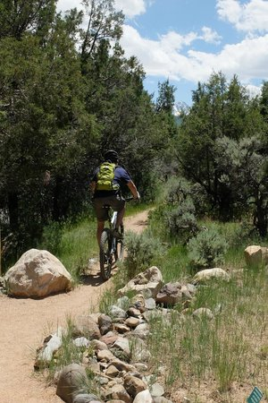 Dennis Weaver Memorial Park: Bikers on trails