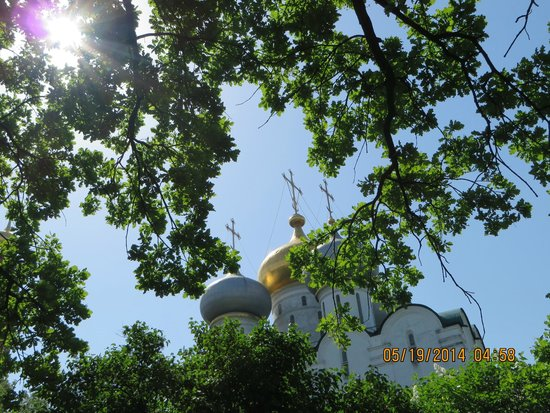 Novodevichy (New Maiden) Convent and Cemetery: More domes