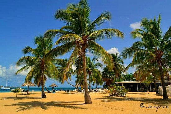 Hotel on the Cay: beautiful property