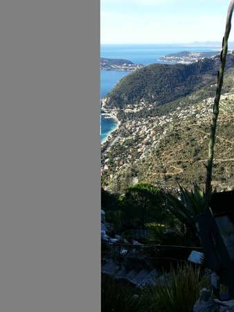 Le Jardin exotique d'Eze : Wonderful view and a nice garden to waltz through