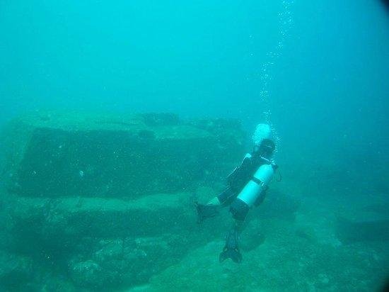 Weligama Bay Dive Center: Mirissa Welligama