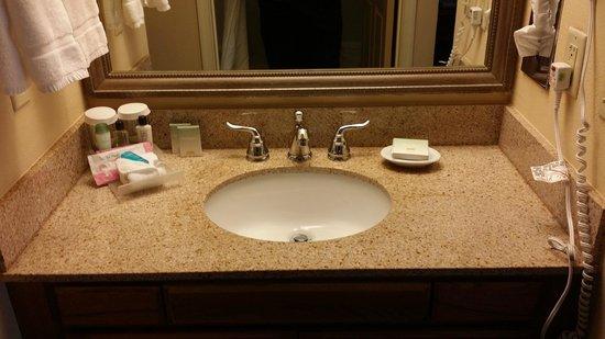 Homewood Suites Tallahassee: Bathroom sink