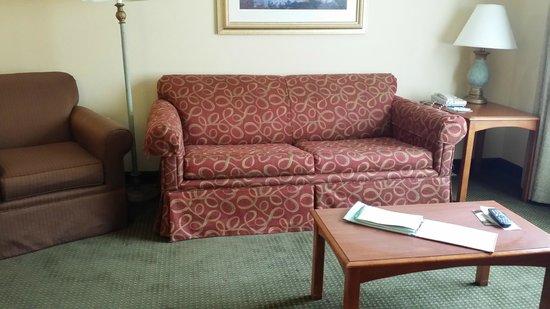 Homewood Suites Tallahassee: Suite sofa