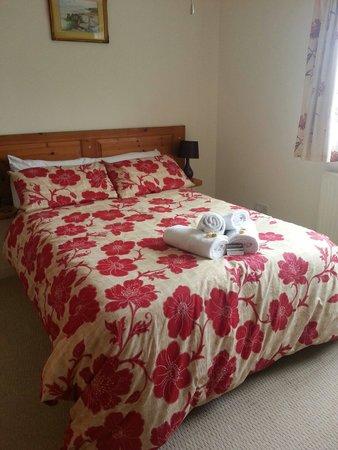 Homeleigh Bed & Breakfast: Double room