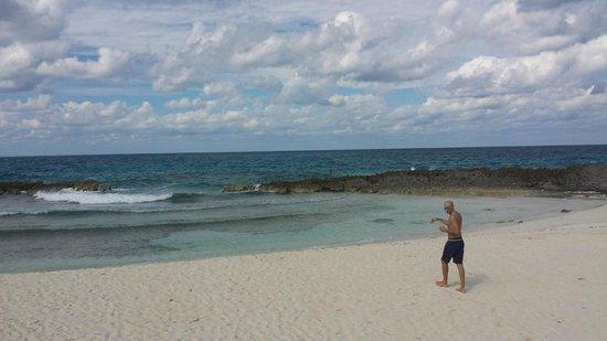 Melia Buenavista: Bar Beach