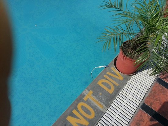 Best Western Merrion : Open Electric Wires in Swimming Pool