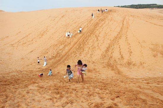 Red Sand Dunes: Sledding