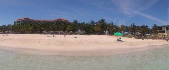 Melia Las Americas: Playa, vista hacia el hotel