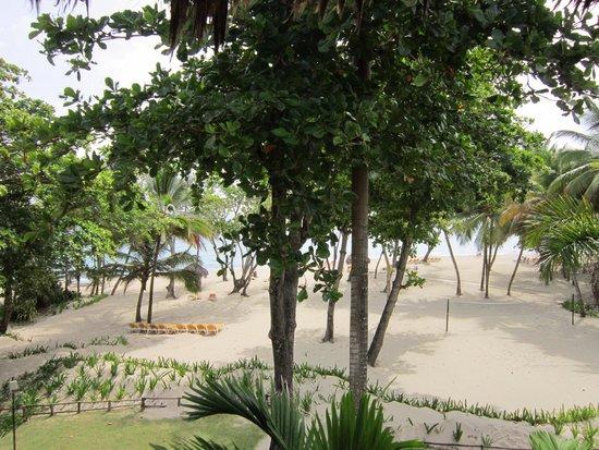 Iberostar Costa Dorada: Am Strand