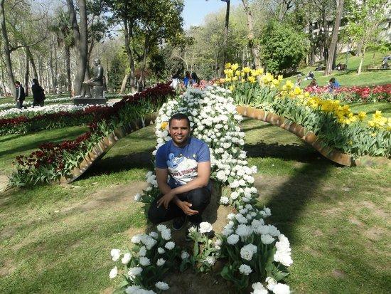 Gulhane Park: :D