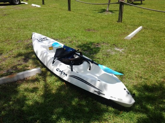 Lisa's Kayaks: This is the Kayak I rented and enjoyed.
