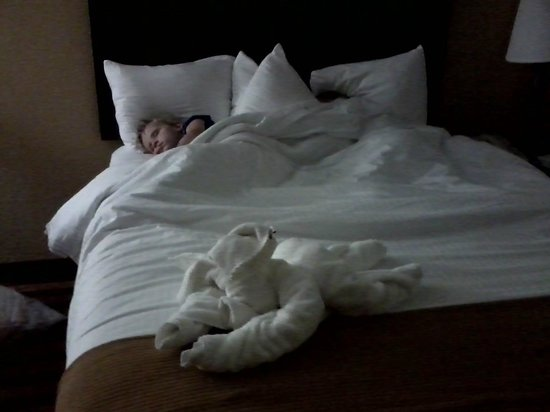 BEST WESTERN Flagship Inn: Kids slept like babies with their bed pal...
