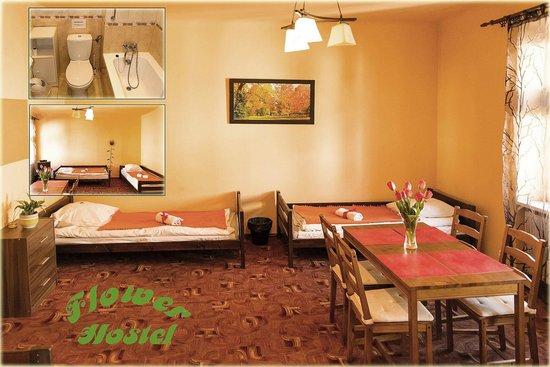 Flower Hostel : New look of our quadruple room