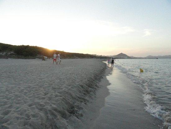 Iberostar Albufera Playa: Beach that is 1 minute walk