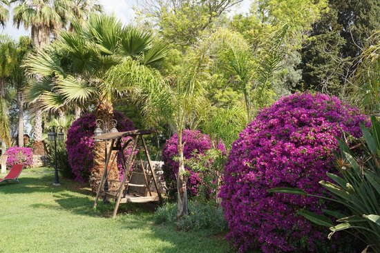 Villa dei Papiri: extérieur 2