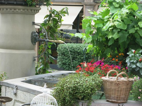 Old Town (Altstadt) : A fountain in old town.