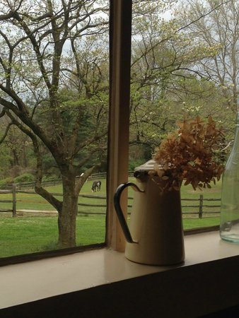 The Inn at Grace Winery : view from the kitchen window in the greenhouse cottage