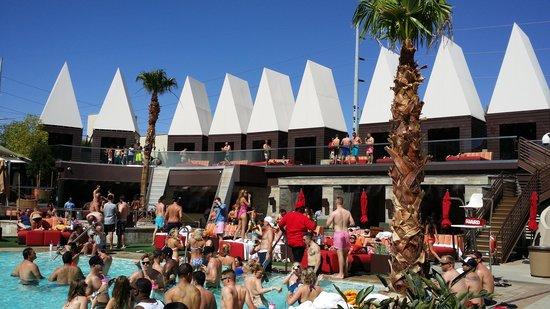Palms Casino Resort : Ditch Fridays