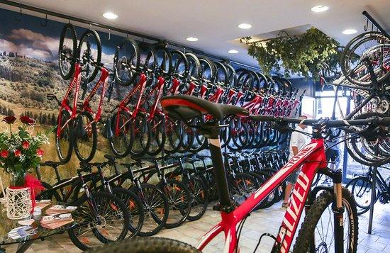 LandHill Bike Rental in Montaione