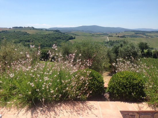 Locanda Le Piazze: Views from the pool area