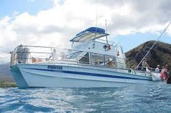 Aloha Blue Charters