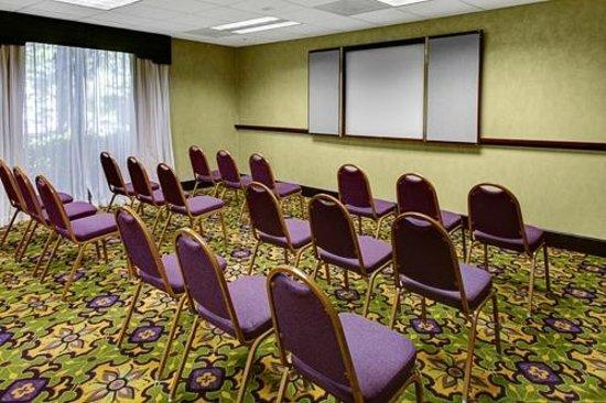 Hampton Inn & Suites Atlanta/Duluth/Gwinnett County : Meeting Room Theater Setup
