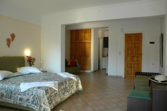 Santa Maura Studios & Apartments: suite