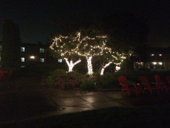 Cedar Hill Lodge : Patio area at night
