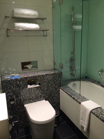 Park Plaza County Hall London: Pretty small bathroom, one at a time please!