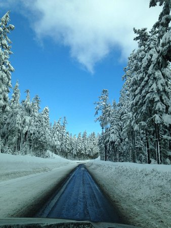 Timberline Lodge: Driving up to the lodge