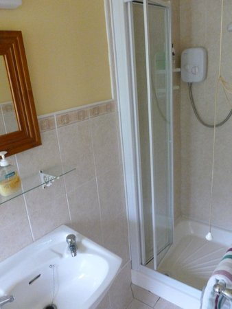 Inny Bay Bed And Breakfast : Shower