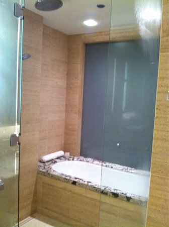 The Langham, Chicago : The shower/bath combo