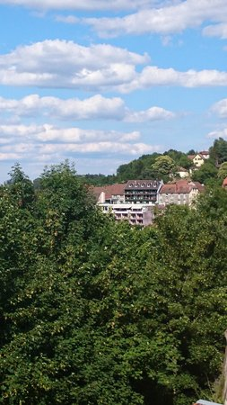 Hotel Aux Trois Roses : hôtel vu du château