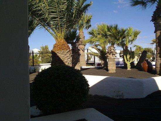 Apartamentos Panorama: Vistas a la piscina desde la terrazita