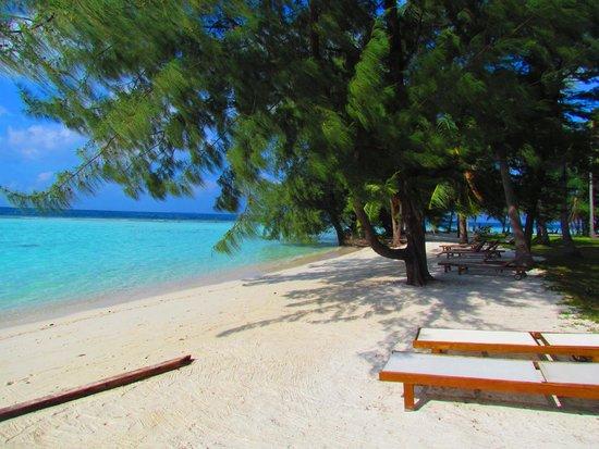 Kura Kura Resort: Spiaggia Kura Kura