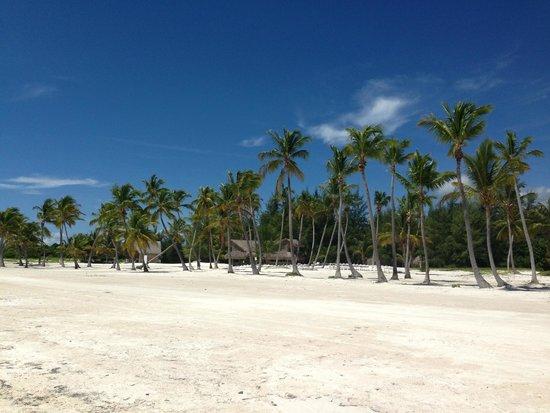 Secrets Royal Beach Punta Cana: Strand