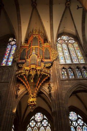 Cathédrale Saint-Étienne : Órgano
