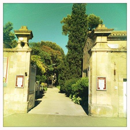 Saint-Paul de Mausole : look for this entrance