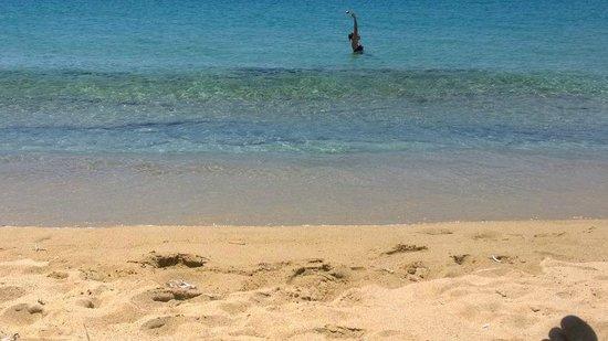 Villa Paradise: золотой песчаный пляж Плака