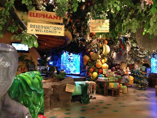 Gift Shop And Entryway Of Restaurant Picture Of