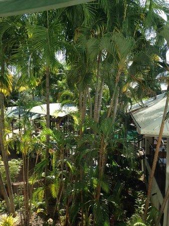 Travelodge Mirambeena Resort Darwin: View from Room #316