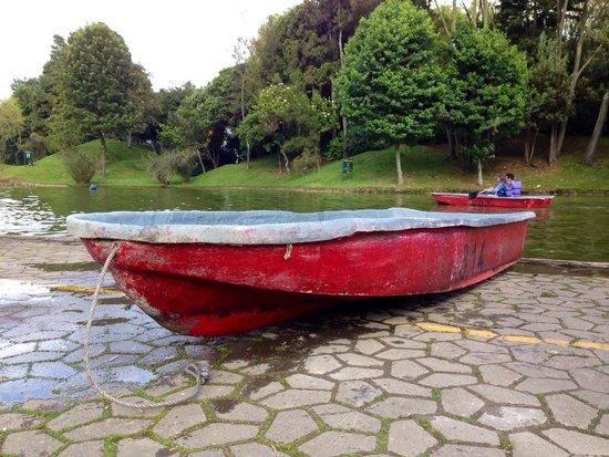 Parque Central Simón Bolivar: Canoes can be rented at Simon Bolivar Metropolitan Park, fun experience