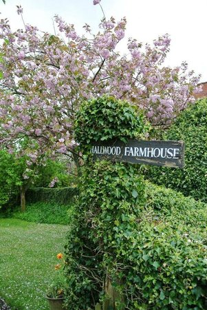 Hallwood Farm Oast House B & B: Welcome!